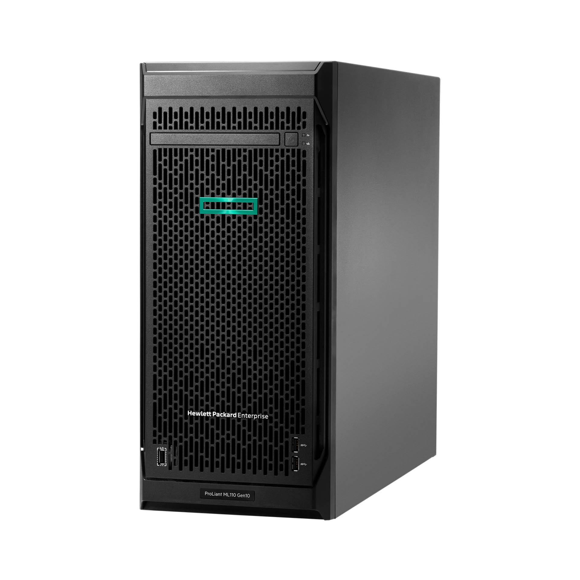 ML3101
